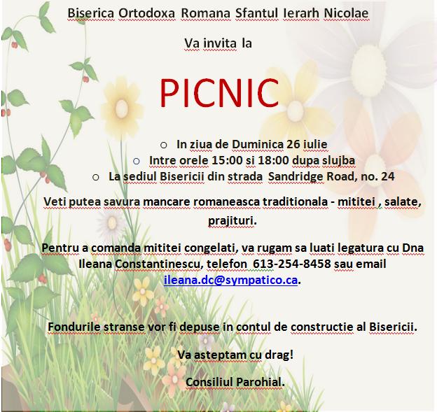 Picnic_26Iulie_2015